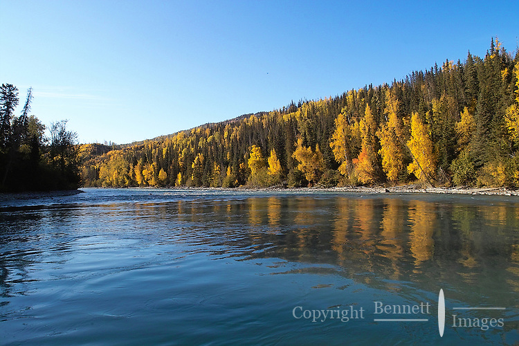 Calm water provides a pause between the rapids in the Kenai River canyon during a falltime float.