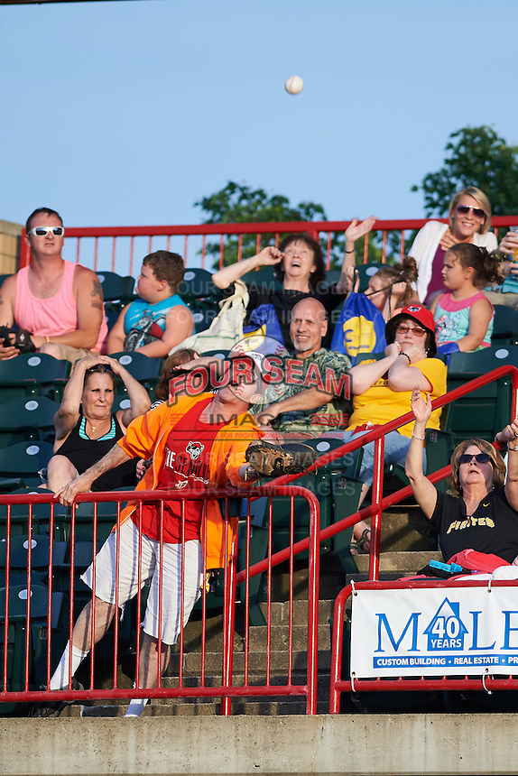 Erie SeaWolves fan trying to catch a foul ball during a game against the Richmond Flying Squirrels on May 27, 2016 at Jerry Uht Park in Erie, Pennsylvania.  Richmond defeated Erie 7-6.  (Mike Janes/Four Seam Images)