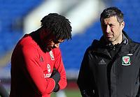 2017 11 13 Wales training at Cardiff City Stadium, Wales, UK
