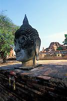 Buddha head statue, Ayuthaya, Thailand