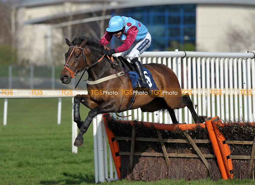 North Cape ridden by Aidan Coleman jumps the last flight and wins the John Haine Memorial Novices´ Hurdle Cl4 2m110y - Horse Racing at Newbury Racecourse, Berkshire - 24/03/2012 - MANDATORY CREDIT: Martin Dalton/TGSPHOTO - Self billing applies where appropriate - 0845 094 6026 - contact@tgsphoto.co.uk - NO UNPAID USE.