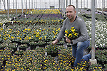 Foto: VidiPhoto<br /> <br /> EST – Tom van den Berg uit Est, tussen zijn viooltjes in de koude kas. Naast een verwarmde en belichte kas met pothortensia's en kerststerren, is Van den Berg Est BV vorig jaar begonnen met het kweken van viooltjes als perkplanten.