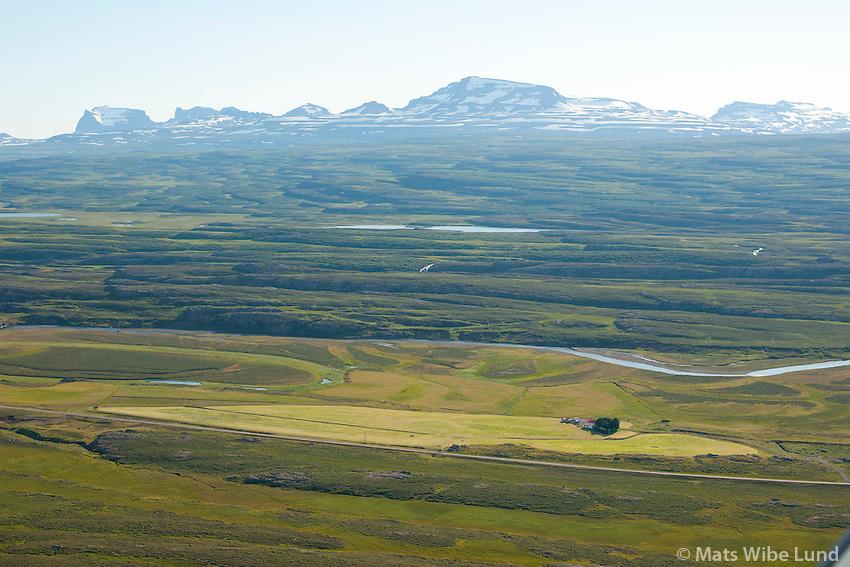 Hleinargarður séð til austnorðausturs, Fljótsdalshérað áður Eiðahreppur, Dyrfjöll í bakgrunni. /  Hleinargardur viewing eastnortheast, Fljotsdalsherad former Hjaltastadahreppur