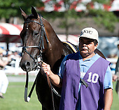 8th James Marvin Stakes - Jackson Bend