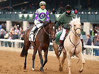 LEXINGTON, KY - April 08, 2018. #2 Rushing Fall and jockey Javier Castellano win the 30th running of The Appalachian Presented by Japan Racing Association Grade 2 $200,000 for owner e Five Racing Thoroughbreds and trainer Chad Brown at Keeneland Race Course.  Lexington, Kentucky. (Photo by Candice Chavez/Eclipse Sportswire/Getty Images)