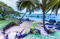 Little Beach, Princeville Kauai.