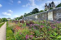 France, Indre-et-Loire (37), Rigny-Ussé, château et jardin d'Ussé, la terrasse inférieure et les plates-bandes e plante annuelles