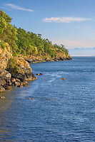 WASJ_D152 - USA, Washington, San Juan Island, Pacific madrone and Douglas fir grow above rocky shoreline along Haro Strait at San Juan County Park; Olympic Mountains rise in the distance.
