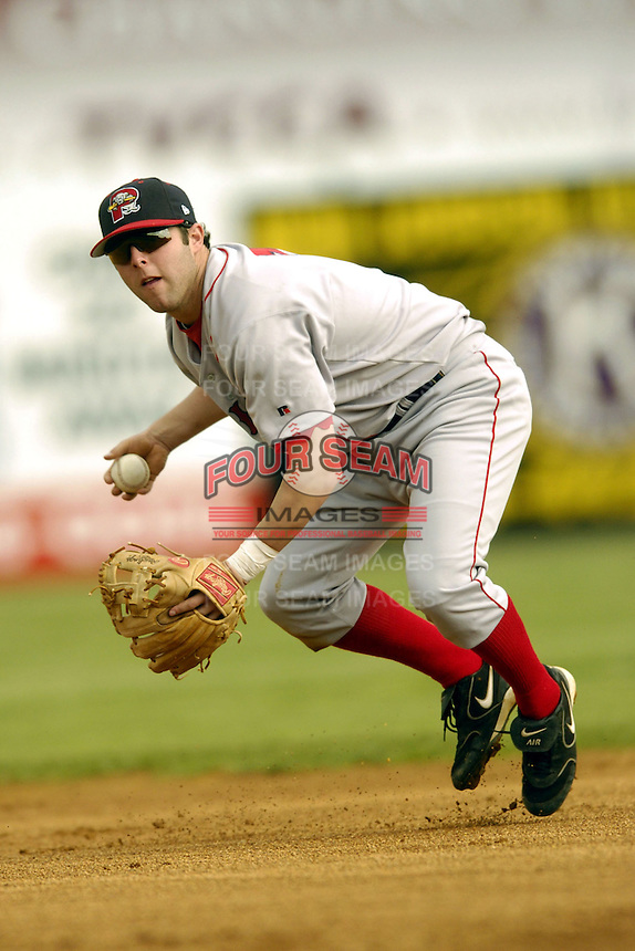 Portland Sea Dogs infielder Dustin Pedroia during a game versus the Norwich Navigators at Dodd Stadium in Norwich, Connecticut on May 29, 2005.  (Ken Babbitt/Four Seam Images)