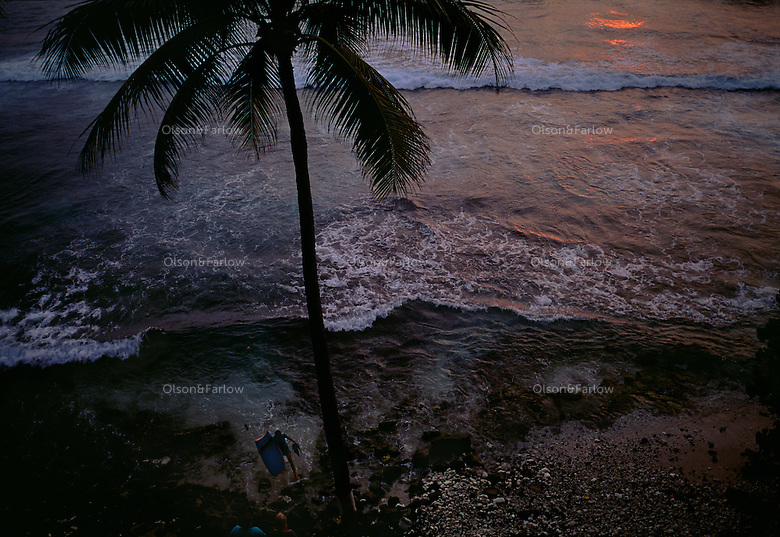 A lone palm tree lines a rocky coast on the Big Island of Hawaii at sunset. Waves wash up onto the empty beach.