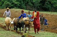 Farmers  ploughing their field