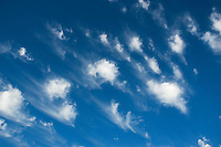 A good example of Cirrus Floccus accents a deep azure sky over Norman Oklahoma.
