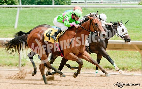 Miss Mischief winning at Delaware Park on 7/11/13