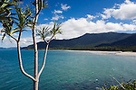 View over Myall Beach at Cape Tribulation, Daintree, Queensland, AUSTRALIA