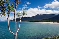 View over Myall Beach at Cape Tribulation, Daintree, Queensland, AUSTRALIA