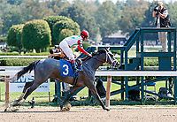 Scenes from around Saratoga Race Course, Sept 4.  Critique (No. 3) wins the fifth race. Ridden by John Velazquez and trained by Todd Pletcher.   (Bruce Dudek/Eclipse Sportswire)