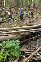 Photo story of Philmont Scout Ranch in Cimarron, New Mexico, taken during a Boy Scout Troop backpack trip in the summer of 2013. Photo is part of a comprehensive picture package which shows in-depth photography of a BSA Ventures crew on a trek.  In this photo a BSA Venture Crew Scouts make their way across, a small stream in the backcountry at Philmont Scout Ranch.   <br /> <br /> The  Photo by travel photograph: PatrickschneiderPhoto.com