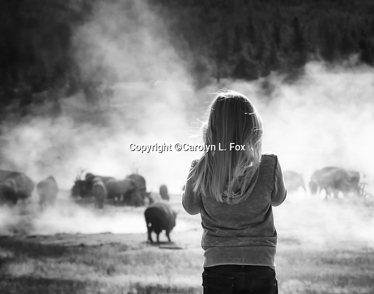 A young girl is watching bison in Yellowstone.