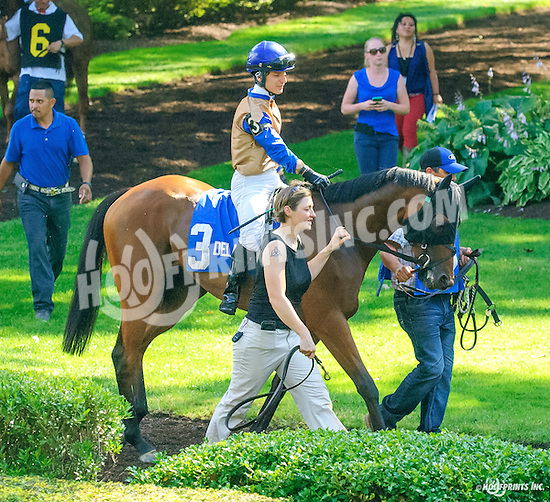 Outsider Art before The Christiana Stakes at Delaware Park on 7/6/16