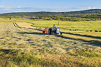 Farmer bales hay on a sunny summer evening along Chena Hot Springs road, interior, Fairbanks, Alaska.