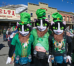 Catnip, Catthew and Mittens during the 28th annual Rocky Mountain Oyster Fry and St. Patrick's Day Parade in Virginia City, Nevada on Saturday March 16, 2019.