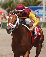 Travelin Man with John Velazquez up wins the Sir Shackleton Stakes. Gulfstream Park Hallandale Beach Florida. 03-31-2012