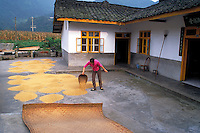 Drying rice at family level