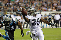 15.08.2013: Philadelphia Eagles vs Carolina Panthers
