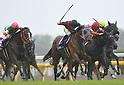 Horse Racing: Victoria Mile at Tokyo Racecourse
