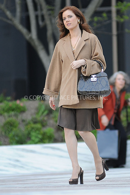 WWW.ACEPIXS.COM . . . . . .May 17, 2013...New York City....Amy Adams on the film set of 'American Hustle' in Lower Manhattan on May 17, 2013 in New York City. ....Please byline: KRISTIN CALLAHAN - WWW.ACEPIXS.COM.. . . . . . ..Ace Pictures, Inc: ..tel: (212) 243 8787 or (646) 769 0430..e-mail: info@acepixs.com..web: http://www.acepixs.com .