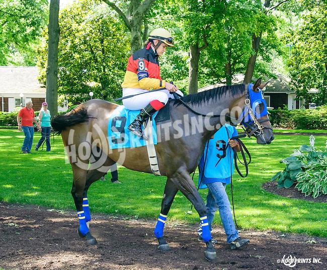 Dulce Vida in The International Ladies FEGENTRI  race at Delaware Park on 6/13/16