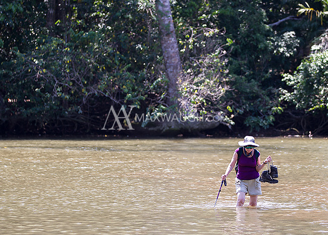 A visitor to Corcovado National Park wades across the Rio Claro.