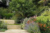 A path constructed from pale stone is edged with plants, trees and shrubs arranged in sculptural groups