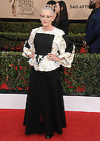 www.acepixs.com<br /> <br /> January 29 2017, LA<br /> <br /> Lori Petty arriving at the 23rd Annual Screen Actors Guild Awards at The Shrine Expo Hall on January 29, 2017 in Los Angeles, California<br /> <br /> By Line: Peter West/ACE Pictures<br /> <br /> <br /> ACE Pictures Inc<br /> Tel: 6467670430<br /> Email: info@acepixs.com<br /> www.acepixs.com