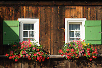 Austria, Vorarlberg, Kleinwalsertal, Mittelberg: flower decorated windows | Oesterreich, Vorarlberg, Kleinwalsertal, Mittelberg: Blumenschmuck auch an den kleinsten Fenstern