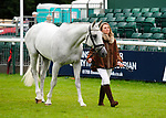30th August 2017. Emma Forsyth (GBR) riding Soltair Justice during the First Horse Inspection of the 2017 Burghley Horse Trials, Stamford, United Kingdom. Jonathan Clarke/JPC Images