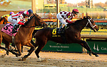 November 24, 2018 : Liora (jockey Channing Hill,#6) passes the stands for the first time on the lead on her way to wnning the 75th running of the G2 Golden Rod at Churchill Downs, Louisville, Kentucky. Owner Coffeepot Stables (Bob Cummings and Annette Bacola), trainer Wayne M. Catalano. By Candy Ride x Giant Mover (Giant's Causeway) Restless Rider (jockey Brian J. Hernandez Jr., #5) was second. Mary M. Meek/ESW/CSM