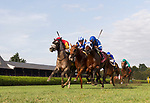 Hizeem (no. 10) wins Race 8, Sep. 1, 2018 at the Saratoga Race Course, Saratoga Springs, NY.  Ridden by Javier Castellano and trained by Chad Brown, Hizeem was placed first after a steward's inquiry and jocky's objection.  Stewards concluded that the first and second place finishers (Final Frontier, no. 8, and Strike Me Down, no. 4,  both interfered with Hizeem who ran between the top two in deep stretch.  (Bruce Dudek/Eclipse Sportswire)