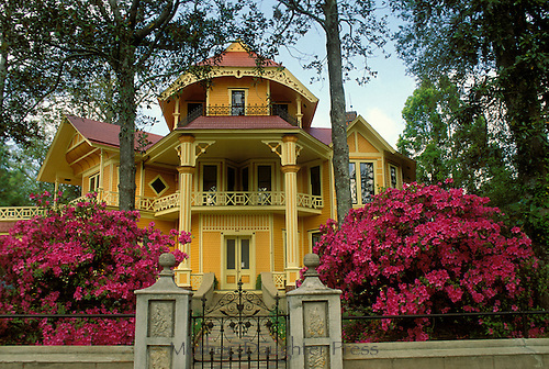 Yellow house with pink azaleas