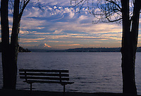 Viewed from a park bench framed by trees, late afternoon light and wispy clouds enhance the sight of Mount Rainier across South Lake Washington. Seward Park, Seattle, Washington State.