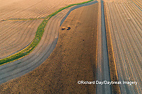 63801-13117 Partially harvested corn field in fall-aerial  Marion Co. IL