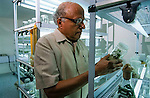 Professor Swaminathan (Father of the Green revolution) at his Genetics Institute, Madras, India.