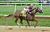 How Convenient winning at Delaware Park on 9/6/14