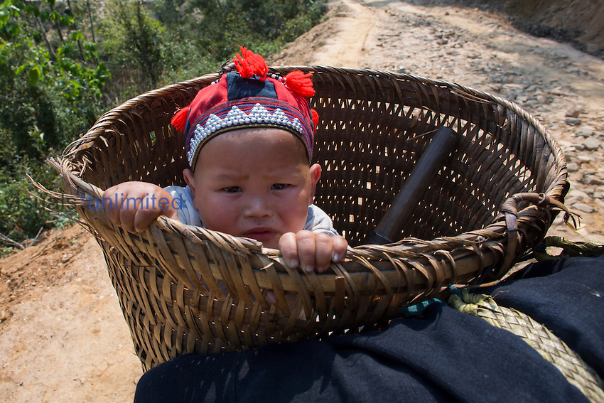 Hmong tribe baby riding in basket on mother's back, Vietnam