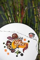 Europe/France/Pays de la Loire/44/Loire Atlantique/Ile de Fedrun/Saint-Joachim: Fondant de Potimarron, Pâtes noires en salade, Encornets grillés, et perdreau brulé aux feuilles d'automne, Recette d'Eric Guerin du restaurant: La Mare aux Oiseaux //  France, Loire Atlantique, Ile de Fedrun, Saint Joachim, Pumpkin Fudge, black pasta salad, grilled squid, partridge and burned the autumn leaves, Recipe Eric Guerin's restaurant, La Mare aux Oiseaux