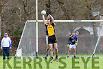 Liebherr's  Dan O'Shea catches the ball in to set up Jamie Doolin for his goal against Intel in the All Ireland Inter Firm final in Fossa on Saturday