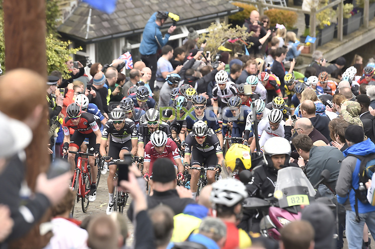 Picture by Allan Mckenzie/SWpix.com - 30/04/16 - Cycling - 2017 Tour de Yorkshire Stage3 - Bradford to Sheffield - Yorkshire, England - The peloton climbs Shibden Wall surrounded by fans and supporters.
