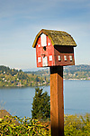 Barn birdhouse with Lake Washington Background.