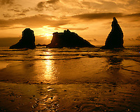Sunset light on Bandon Beach on the Pacific Ocean, Bandon, OR