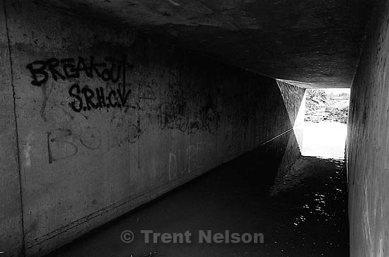 Tunnel in the creek.<br />